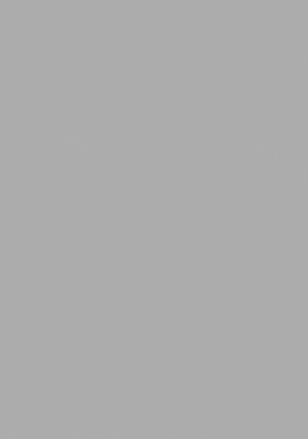 Usa Nyan 2 1