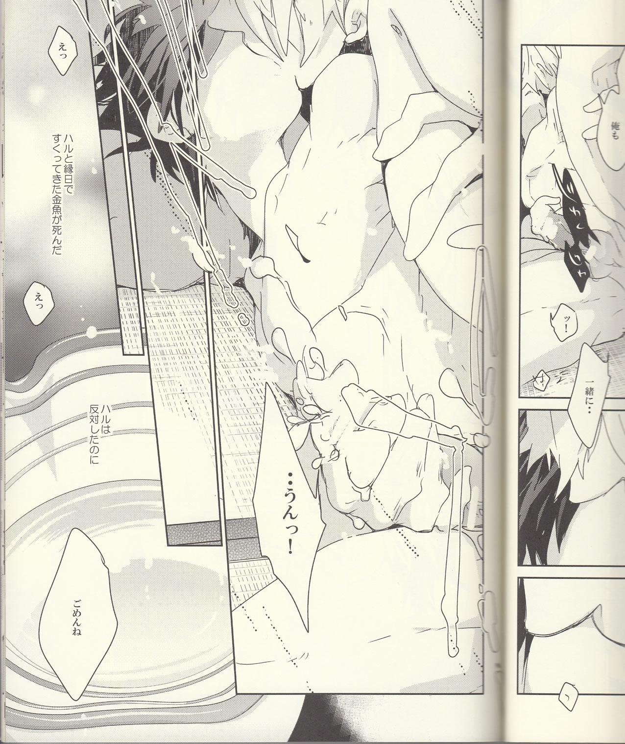 Seichouki 17