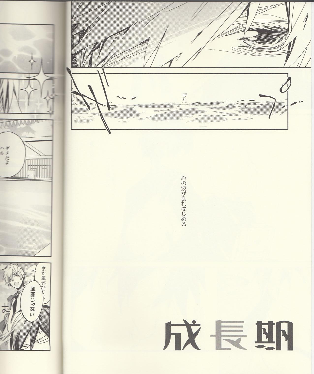 Seichouki 2